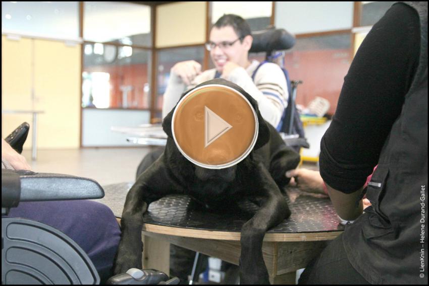 Image Vidéo 1
